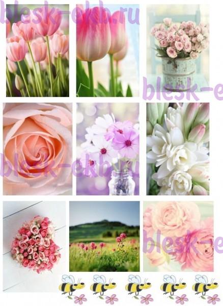 Цветов ташкенте интернет магазин цветы в екатеринбурге букеты цветов для
