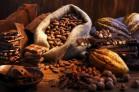 Отдушка косметическая Какао  и табак Франция 10 мл - Все для мыла ручной работы - интернет-магазин Blesk-ekb.ru, Екатеринбург