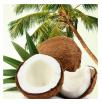 Coconut (Кокос) ароматизатор 10 мл - Все для мыла ручной работы - интернет-магазин Blesk-ekb.ru, Екатеринбург