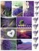 Водорастворимая бумага с печатью Лаванда 1 шт - Все для мыла ручной работы - интернет-магазин Blesk-ekb.ru, Екатеринбург