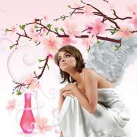 Angels Whispering (Шепот ангелов)  ароматизатор 10 мл - Все для мыла ручной работы - интернет-магазин Blesk-ekb.ru, Екатеринбург