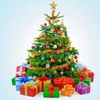 Рождественская ель  отдушка США 10 мл - Все для мыла ручной работы - интернет-магазин Blesk-ekb.ru, Екатеринбург