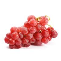 Водно-глицериновый экстракт Красного винограда 15 мл - Все для мыла ручной работы - интернет-магазин Blesk-ekb.ru, Екатеринбург