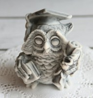 Силиконовая форма Сова УЧИТЕЛЬ 3D, 1 шт - Все для мыла ручной работы - интернет-магазин Blesk-ekb.ru, Екатеринбург