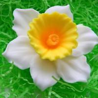 Силиконовая форма Цветок нарцисс 3D 1 шт - Все для мыла ручной работы - интернет-магазин Blesk-ekb.ru, Екатеринбург